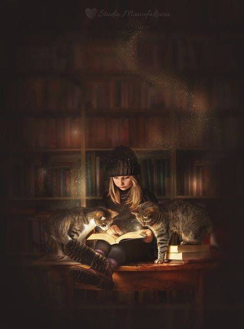 So many books, so little time........