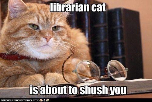 Ssshhh...no meowing!